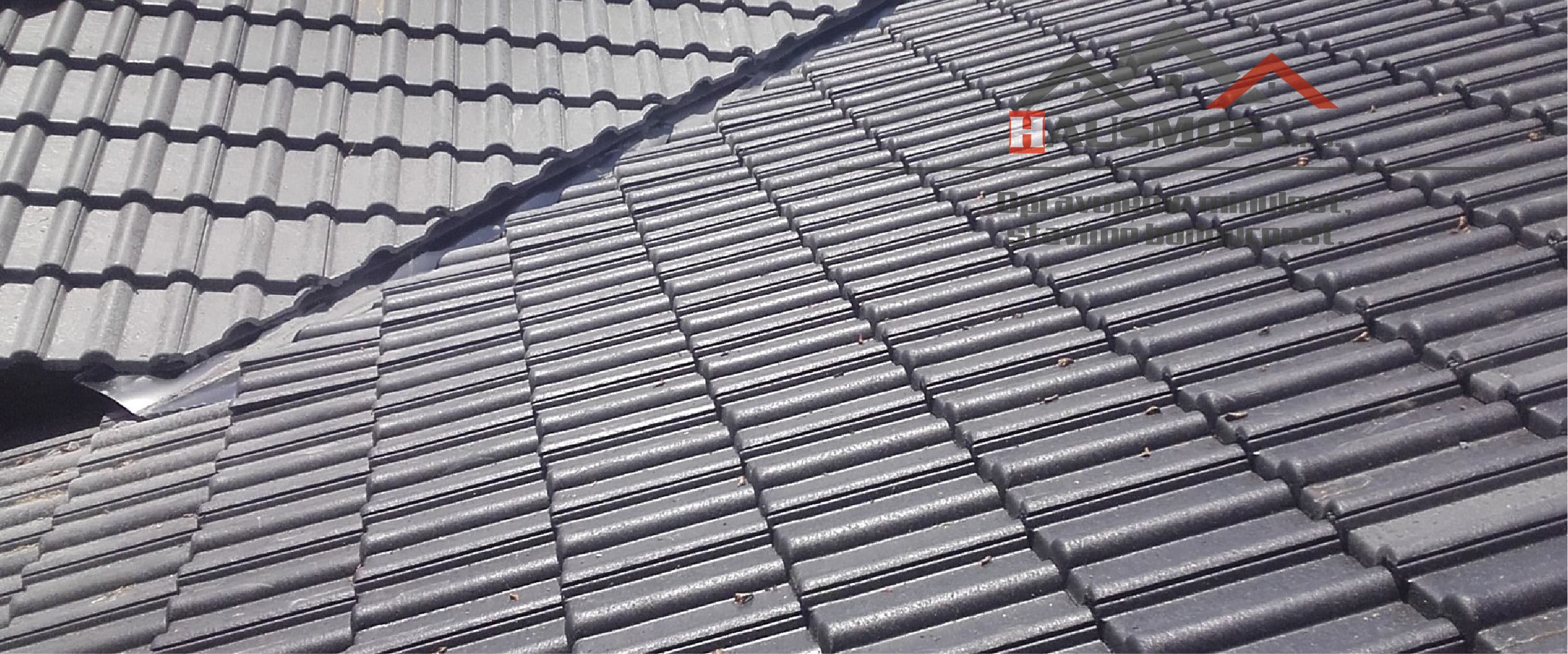 strechy_hausmos_uvod-06